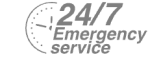 24/7 Emergency Service Pest Control in Clerkenwell, Finsbury, Barbican, EC1. Call Now! 020 8166 9746